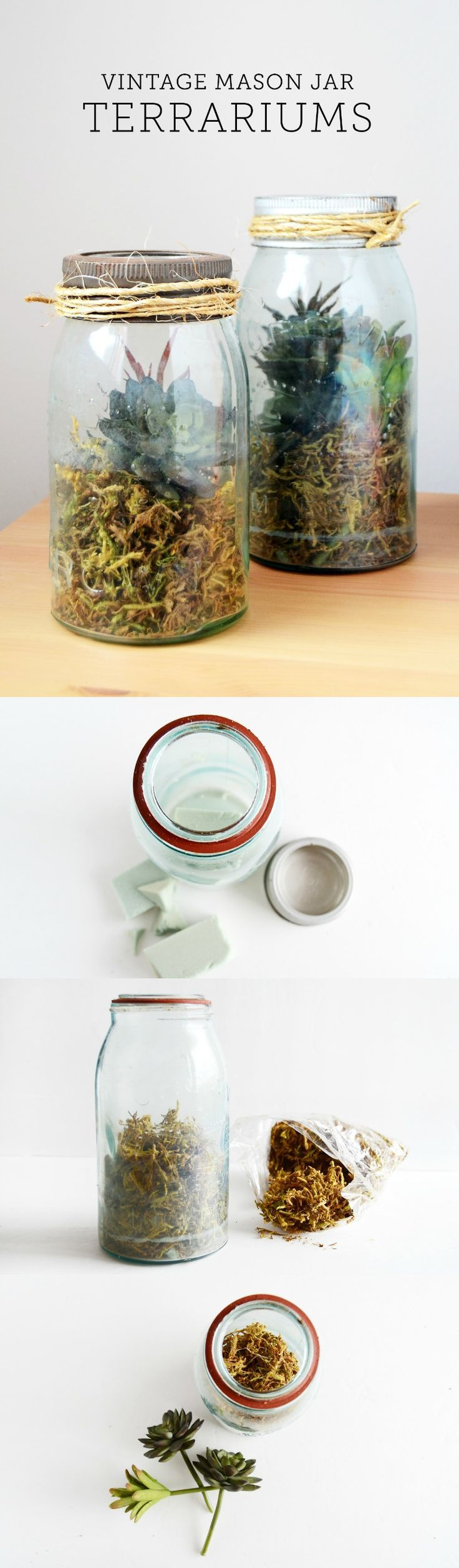 Decor hacks learn how to make a diy terrarium using a for How to learn to decorate your home