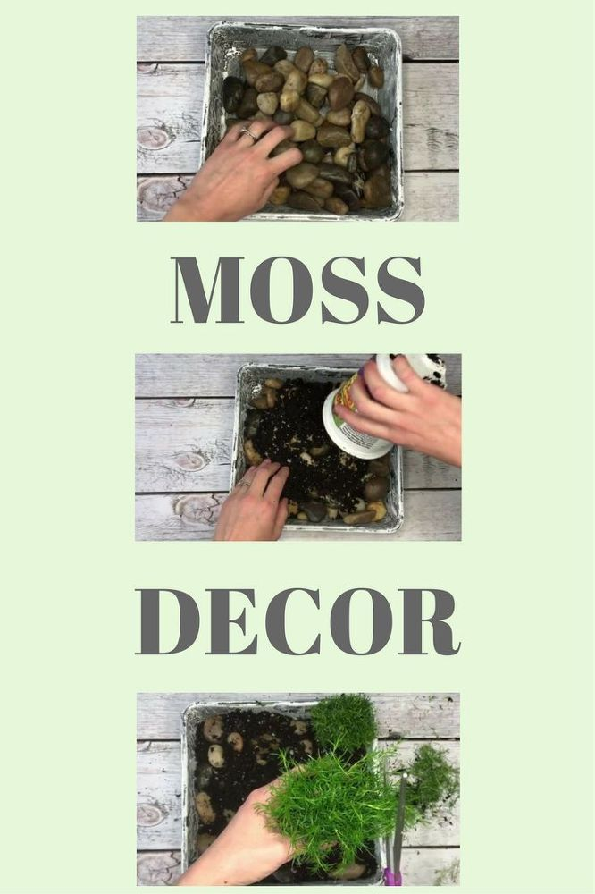 Decor hacks learn how to make moss monogram decor a for How to learn to decorate your home