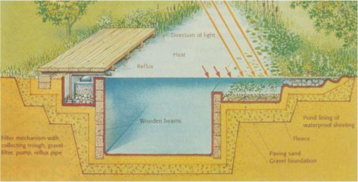 Decor pools pristine swimming decor object your for Pristine garden rooms