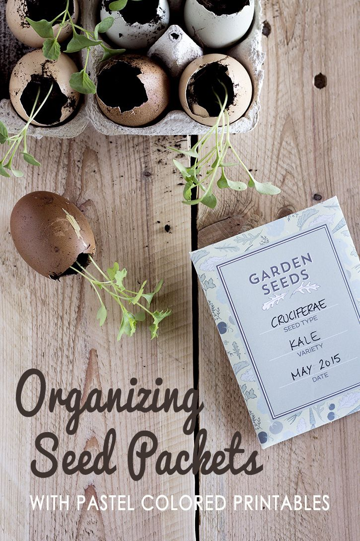 It's that time of year, time to start making plans for your Summer garden. G...