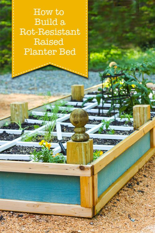 Want to build a rot-resistant raised planter bed that's beautiful as well as sturdy?