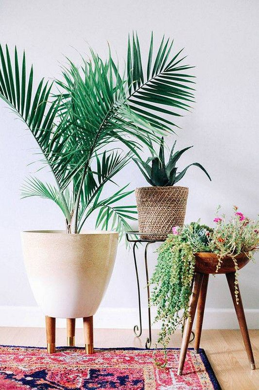 Home Decor Living Room Living Room Updates White Vignette With Potted Plants Decor Object Your Daily Dose Of Best Home Decorating Ideas Interior Design Inspiration