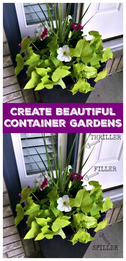 Home decorating diy projects create your own container garden with this easy tutorial for Design your own container home