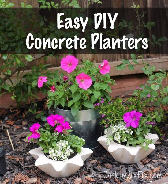 Scalloped Concrete Planters (From Thrift Store Bowls)