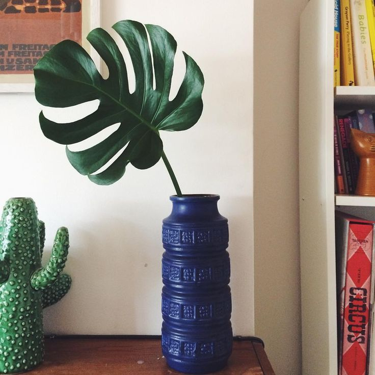 Vases home decor instagram photo by naomi wilkinson for Best home decor instagram