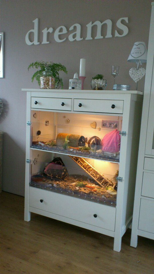 Beautiful Home Made Guineapig Cage