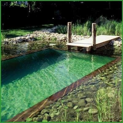 would be cute idea to have a small pier instead of a diving board on a regular s...
