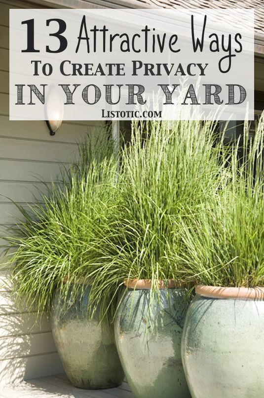 How to easily add privacy to a yard, deck or patio - great for urban dwellers or...