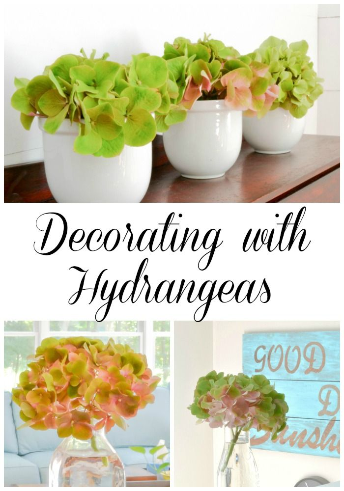Some great, non-fussy ways to decorate with hydrangeas. I'm so glad I have a...