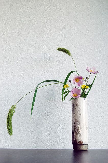 Ikebana 'Raku sprouting field flowers'