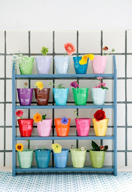 Colorful pots to brighten any room! #coloreveryday
