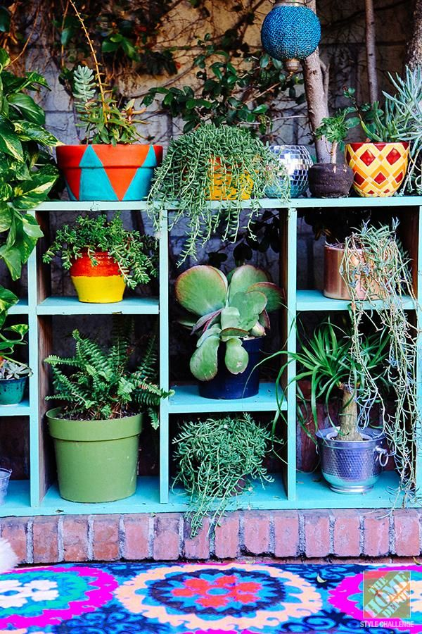 Upcycle an old shelf with bright aqua paint to create a plant display. Click thr...