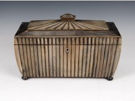 Anglo Indian Buffalo Horn Tea Caddy