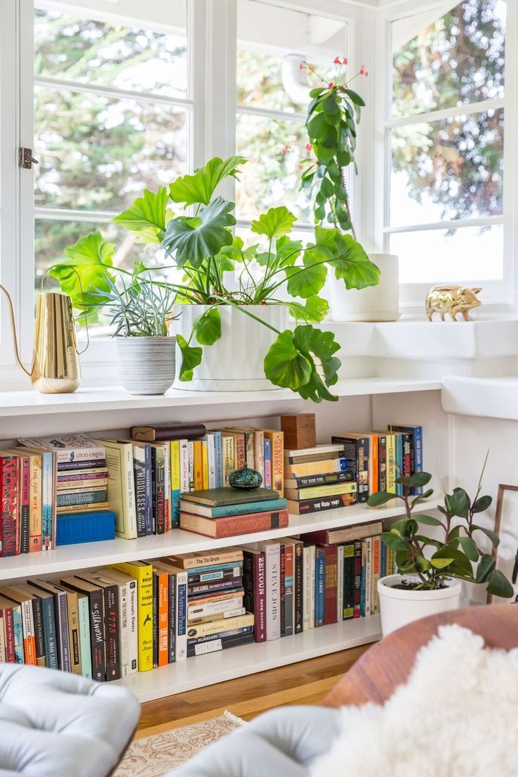 Home decor living room books and plants in a white shelf decor object your daily dose of - Home decor books ...