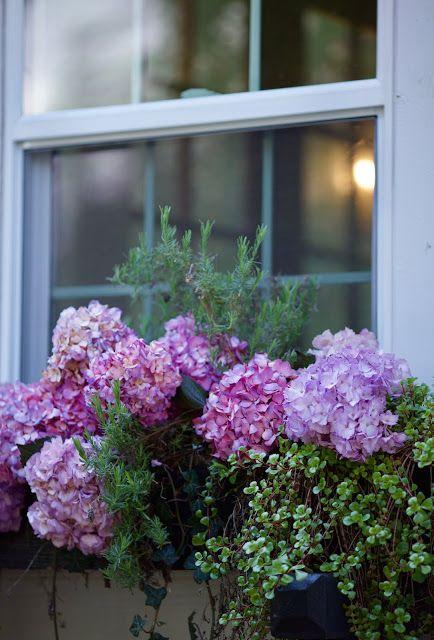 Spring garden planning & new series