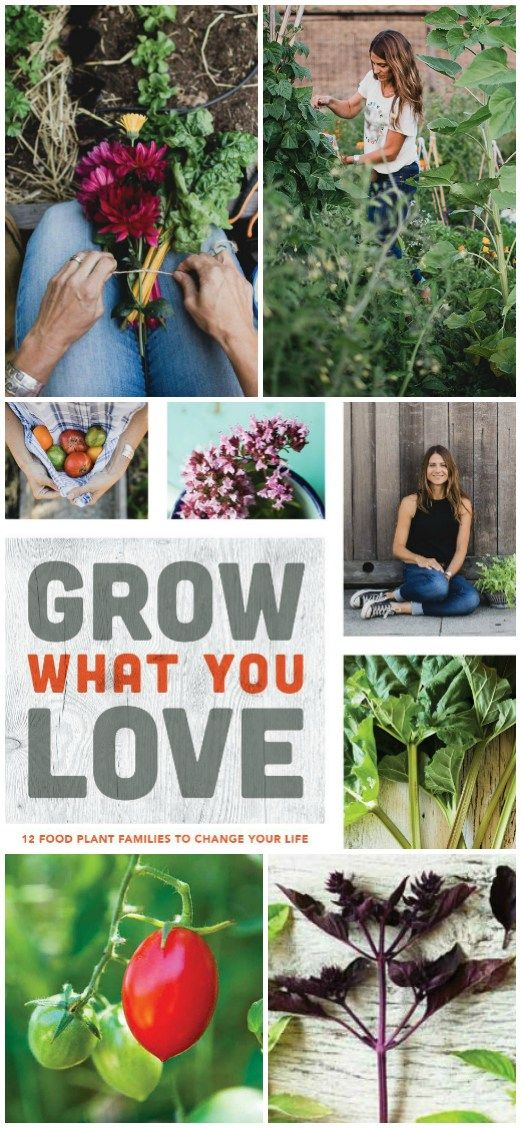 A Book Review: Grow What You Love | Angie The Freckled Rose