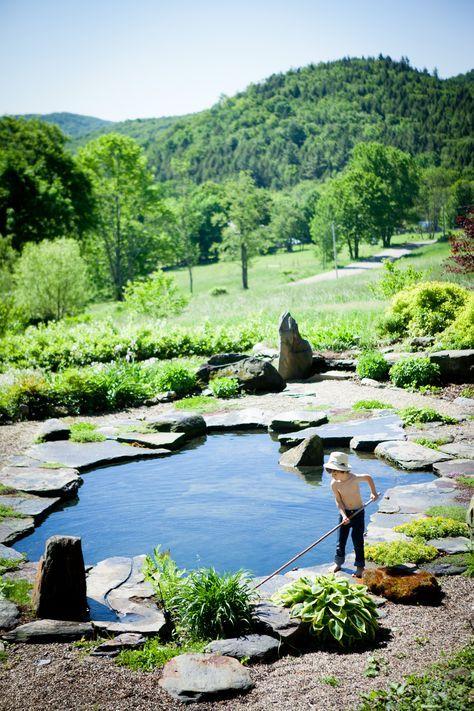 Decor Pools Natural Swimming Pool Swimming Pond