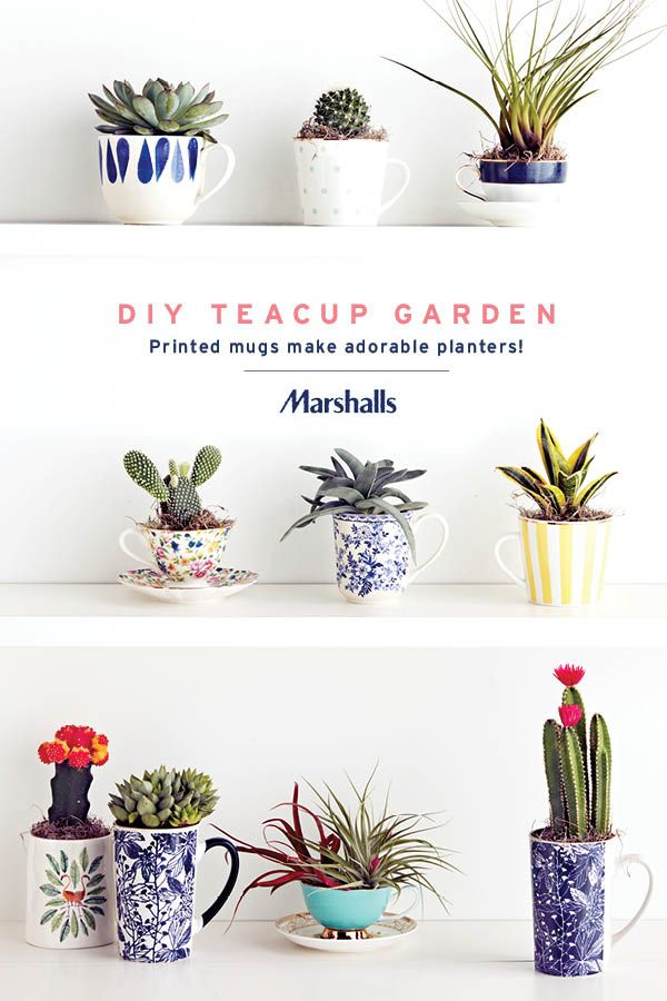 DIY teacup garden! Colorful teacups and coffee mugs make adorable little planter...