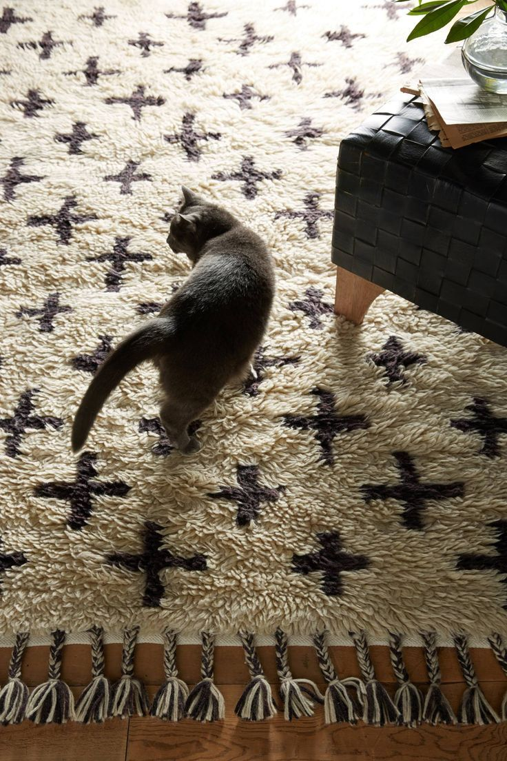 Slide View: 2: Moroccan Cross Rug cat in living room The shaggy wool on this han...
