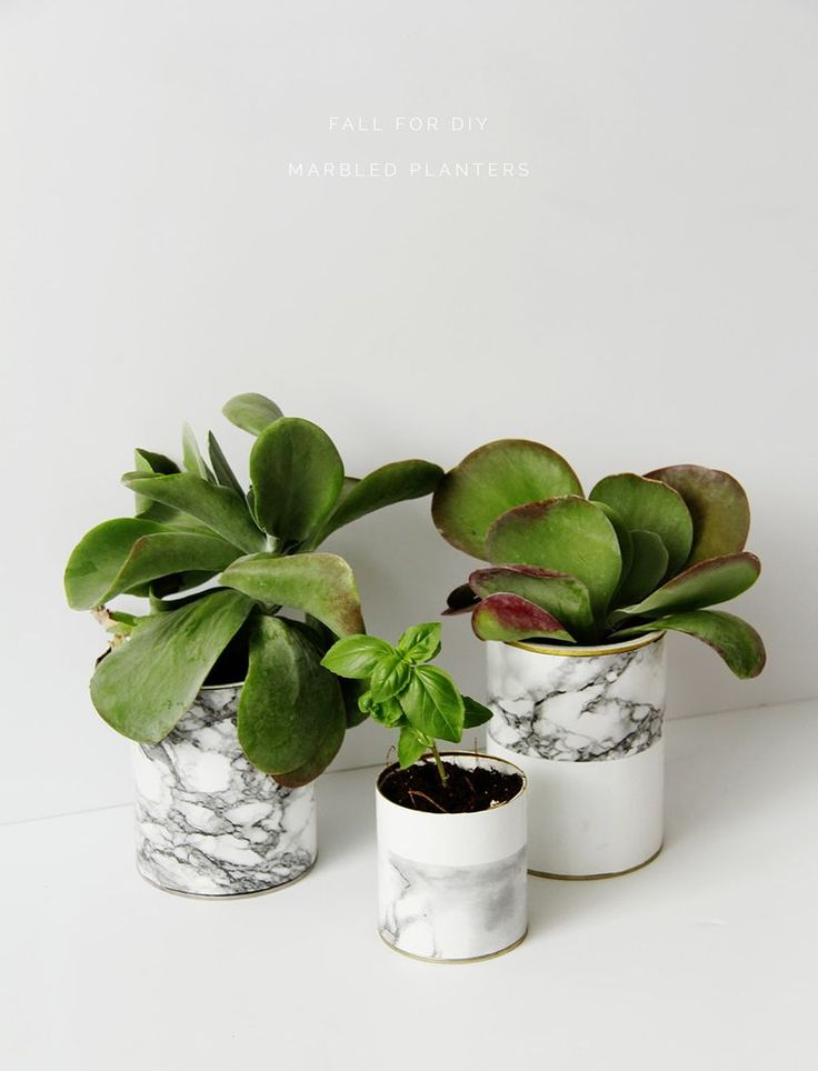 DIY Marble Planters (Fall For DIY)