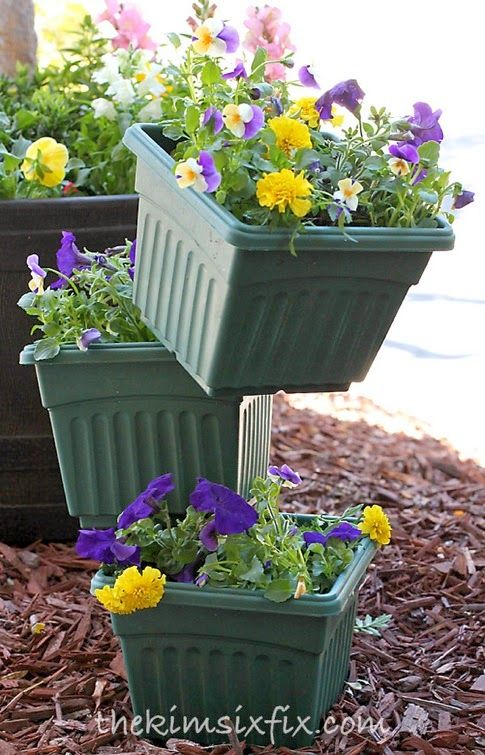 100+ Easy Container Garden Ideas