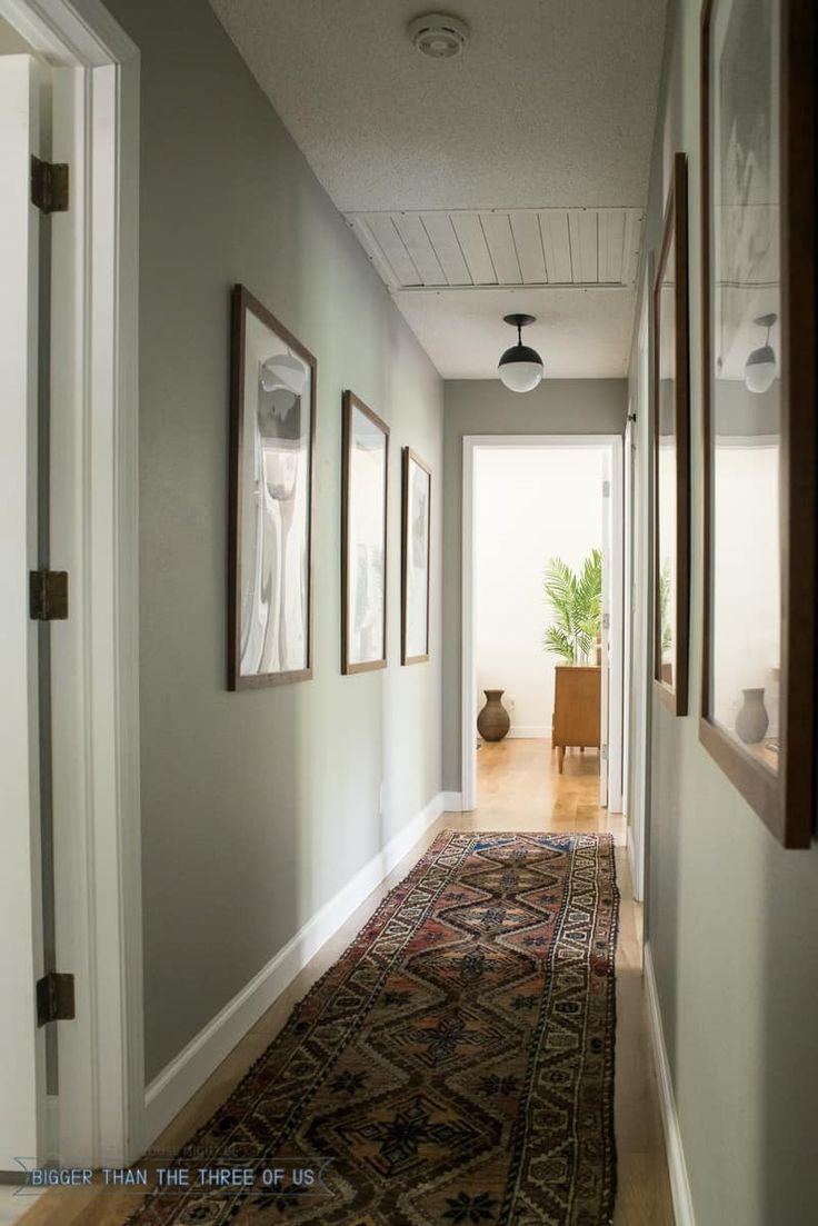 Grey Husky by Benjamin Moore in Hallway