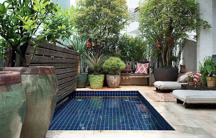 Urban Garden with small pool