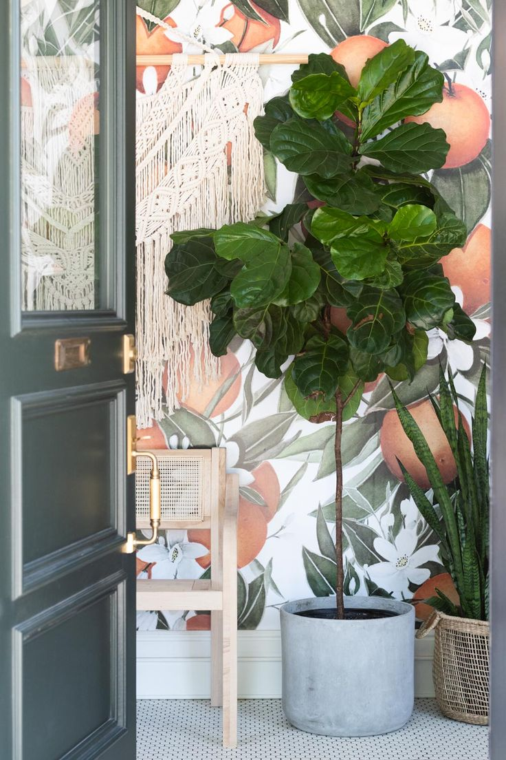 Wallpapered entryway peachy and greenery