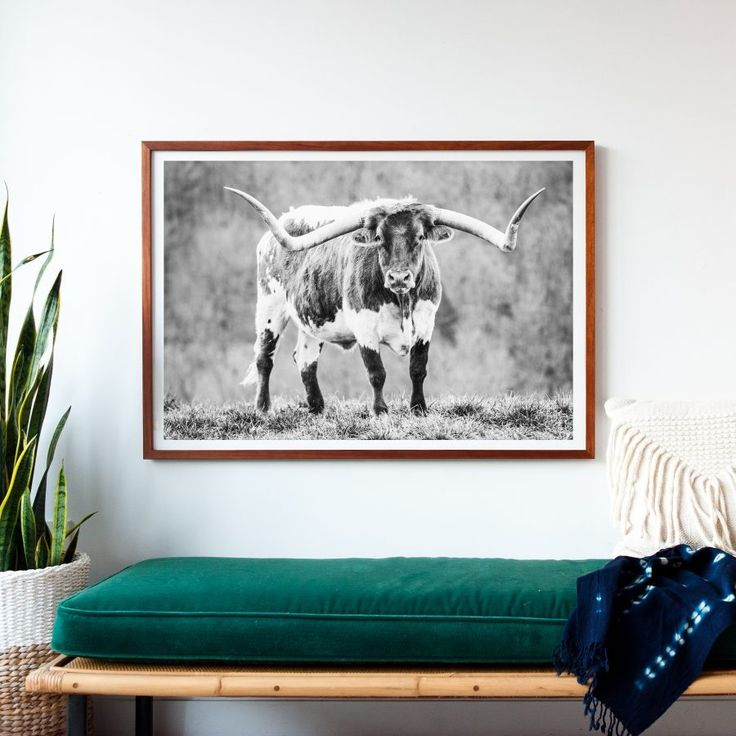 CC and Mike print shop - buy gorgeous affordable art, longhorn picture, modern f...
