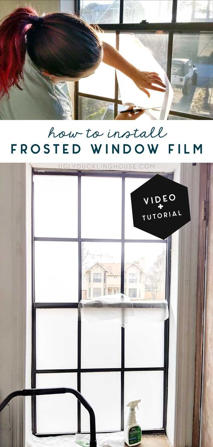 How I Installed Frosted Window Film — and Got the Dog to Stop Barking!
