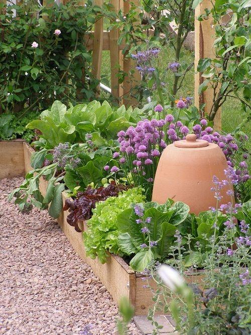 Kitchen Garden!