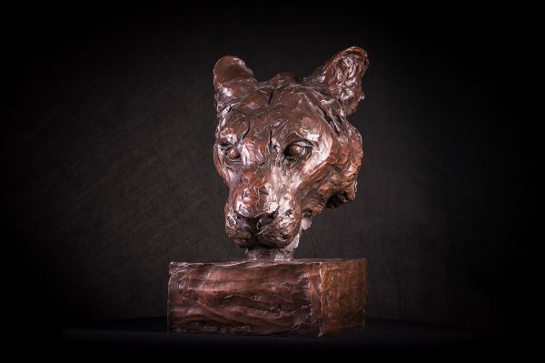 #Bronze #sculpture by #sculptor Matt Withington titled: 'Portrait of a Lioness (...