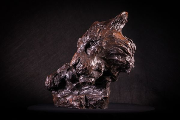 'Killing Time (Bronze Resting Tiger Head Bust statue sculpture for sale)' by Matt Withington