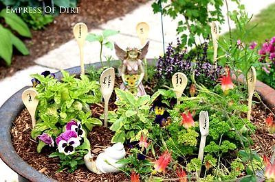 DIY-Fairy-Herb-Garden-
