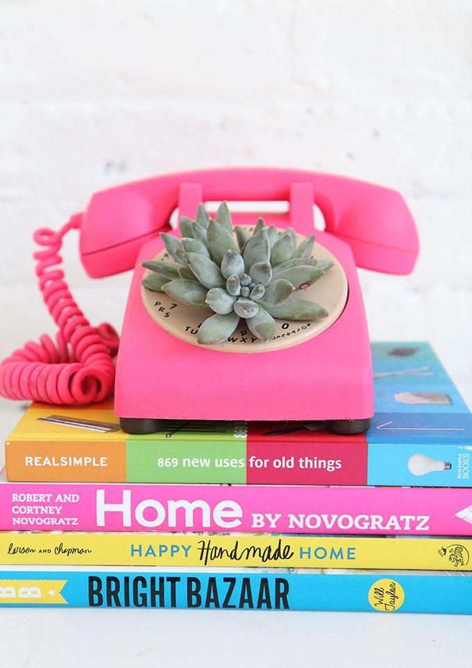MY DIY | Rotary Phone Succulent Planter | I SPY DIY