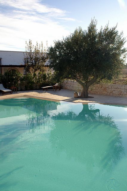 Pool-Masseria-Fumarola-Puglia