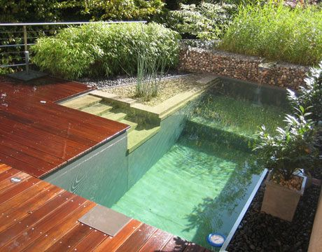 como fazer uma piscina natural - Pesquisa Google