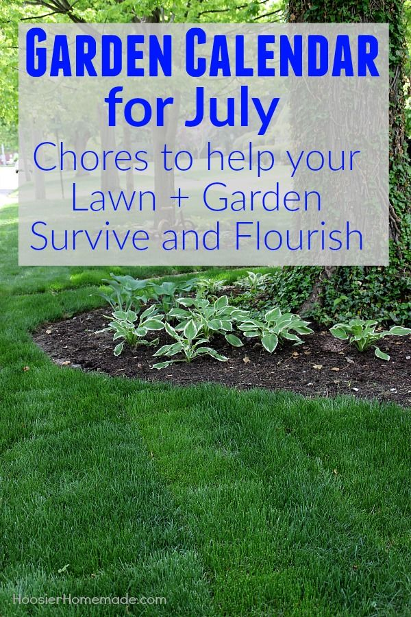The Garden Calendar for July is packed with chores that will make your lawn and ...