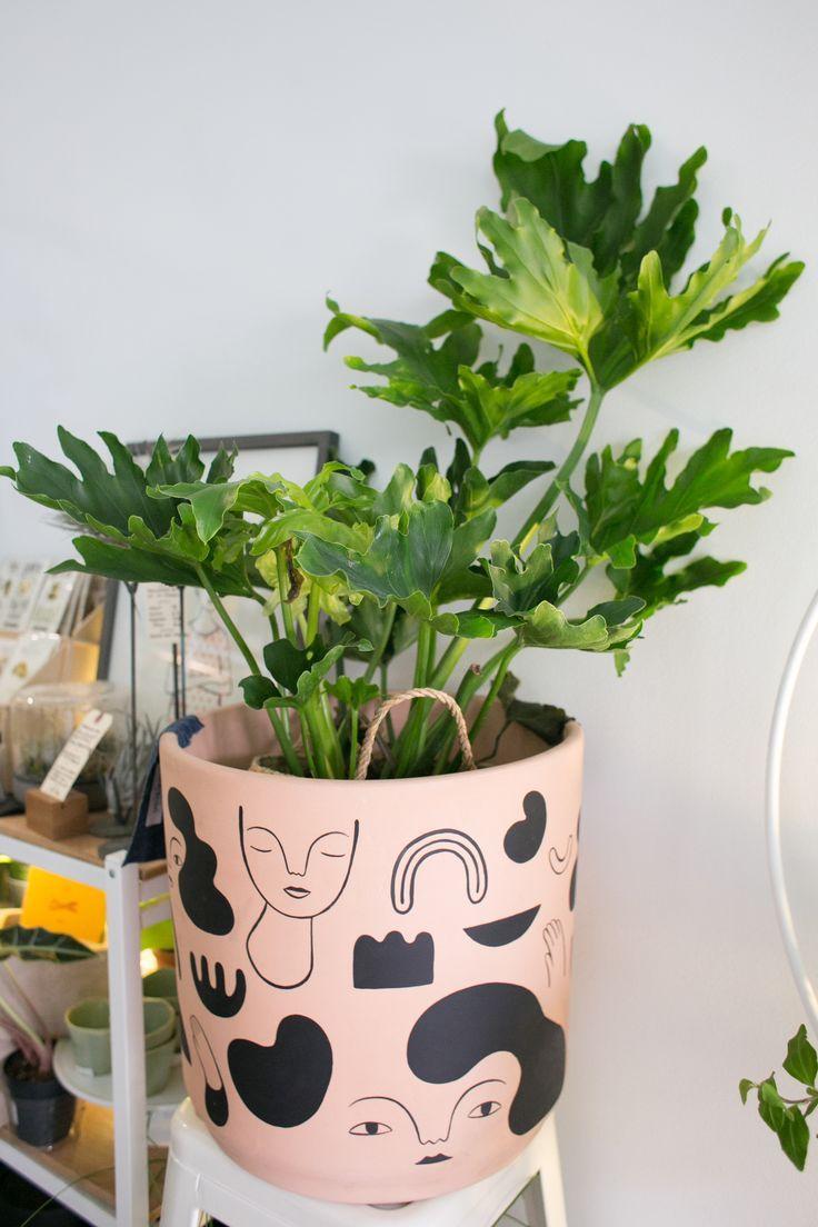 The Zen Succulent | Durham's Neighborhood Plant & Gift ShopThe ZEN Succulent Home Modern Terrarium & Plant Craft
