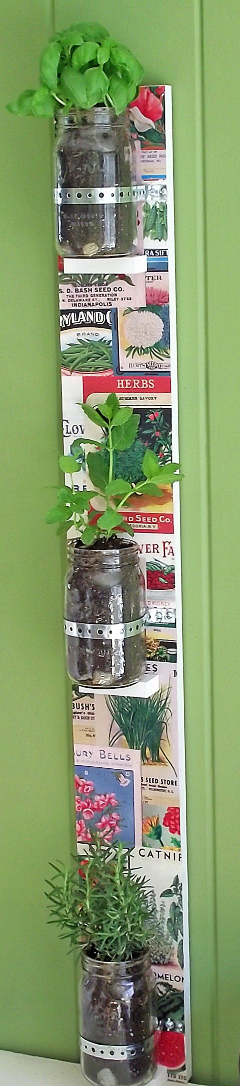 DIY Hanging Herb Garden with Mason Jars - Mod Podge Rocks