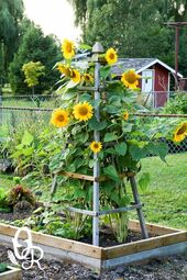 Delightfully Pretty Wooden Sunflower Pyramid